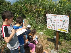 Val di Magra, National Park of Montemarcello, Botanical Garden Activities, Liguria Pictures