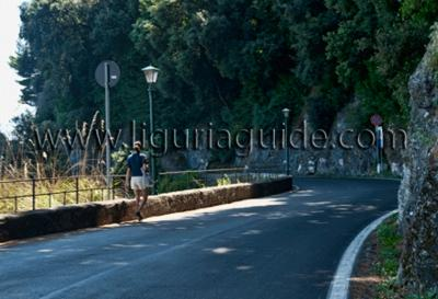 The coastal road leading to Portofino