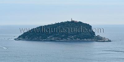 Island of Tino
